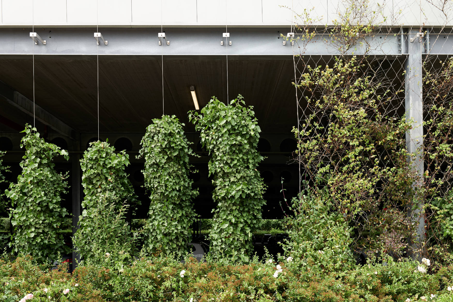 Cheshire Oaks Wire Rope Green Wall