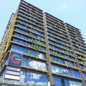 Green Walls Help Clean the Air We Breathe