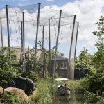 Jakob Webnet Animal Enclosure Chester Zoo