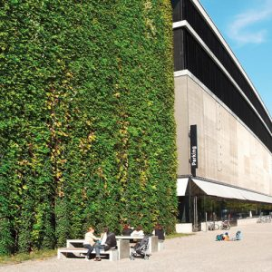 MMA Green Wall Solutions to Feature at Ecobuild