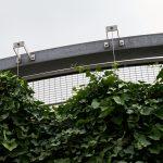 Webnet Green Wall Cheshire Oaks Car Park