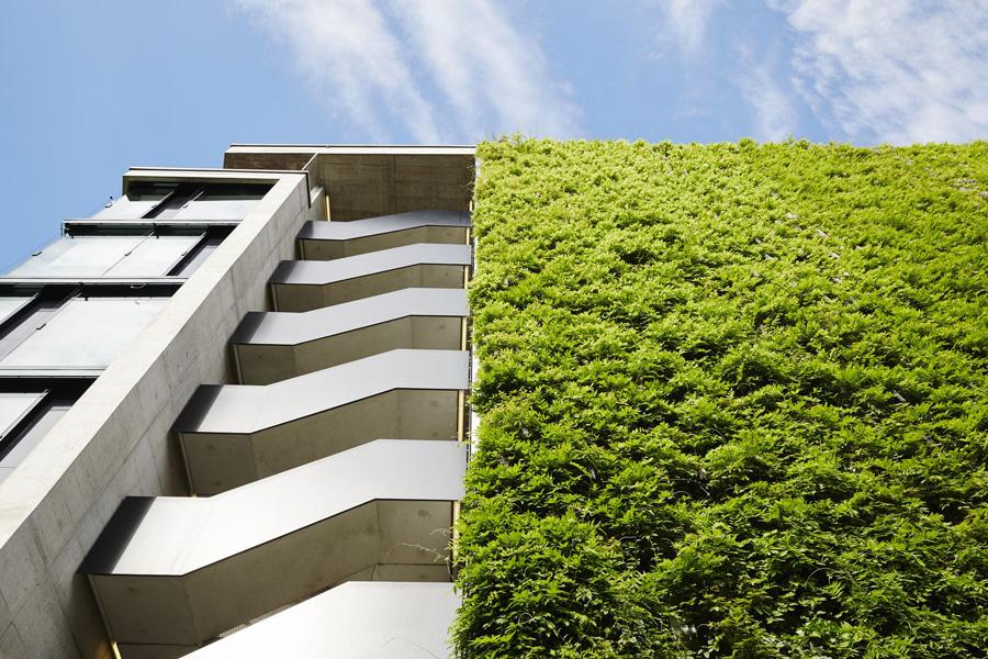 Green Walls Jakob Green Wall Solution From Mma